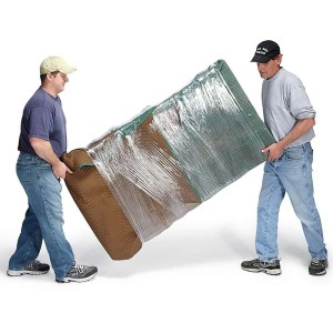 piano-movers-2